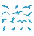 silhouettes flying seagulls vector image vector image