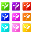 tea leaf sprout set 9 vector image vector image
