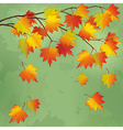 vintage autumn background with branch tree vector image