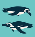 cute penguins underwater antarctic birds swimming vector image