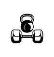hex dumbbells and kettlebell icon set on white vector image
