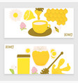 honey and ginger design concept vector image vector image
