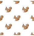 squirrelanimals single icon in cartoon style vector image vector image
