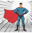 Super Action Hero Stand vector image vector image