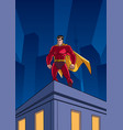 superhero roof watching vector image vector image