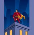 superhero roof watching vector image vector image