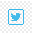 twitter social media icon design template vector image vector image