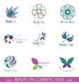 Design Elements isolated on White Background vector image
