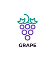 grape linear logo element vector image vector image