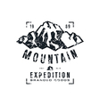 Mountain expedition label with texture vector image