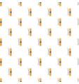 ski equipment pattern seamless vector image