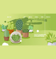 succulent store website design vector image