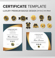 professional certificate design with badge vector image