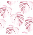 seamless floral pattern from tropical monstera vector image