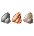 three colors of pebble rocks vector image vector image