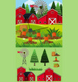 farm scene with red barn and carrot garden vector image