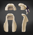 judge periwigs 3d realistic collection vector image vector image