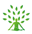 Person meditating under a tree vector image vector image