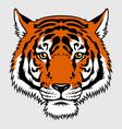 tiger 016 vector image vector image
