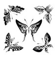 wonderful butterflies set vector image vector image