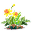 yellow daffodils and ferns on white background vector image vector image