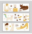 cats concept friendly vector image vector image
