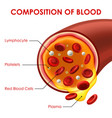 composition blood medicine aid scheme vector image