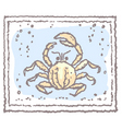 crab in frame vector image