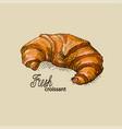 fresh croissant vector image