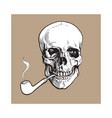 hand drawn human skull smoking lacquered wooden vector image vector image
