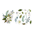 set with white flowers vector image