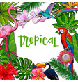 banner with tropical palm leaves birds flowers vector image vector image