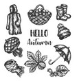 doodle autumn icons set hand drawn vector image