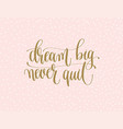 dream big never quit - gold hand lettering vector image vector image