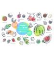 fruits hand drawn icons set fresh organic food vector image