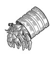 hermit crab in tin can sea animal sketch vector image