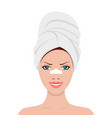 strips cleansing pores vector image