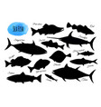 big set fish silhouettes vector image