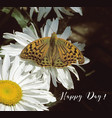 butterfly and camomile-engl vector image vector image