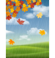 maple tree autumn landscape and rain vector image vector image