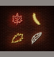 neon leaves signs isolated on brick wall vector image vector image