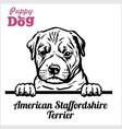 puppy american staffordshire terrier - peeking vector image vector image