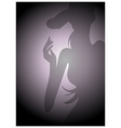 Woman Beauty Silhouette vector image