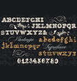 collection of english abc in vintage style vector image
