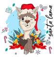 cute lama christmas hat vector image vector image