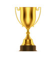 golden trophy or cup goblet for sport winner vector image