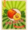Peach retro poster vector image vector image