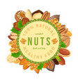 poster banner with nuts and seeds in round shape vector image vector image