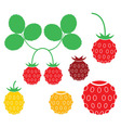 Wild strawberry vector image vector image