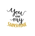 You are my sunshine romantic card vector image
